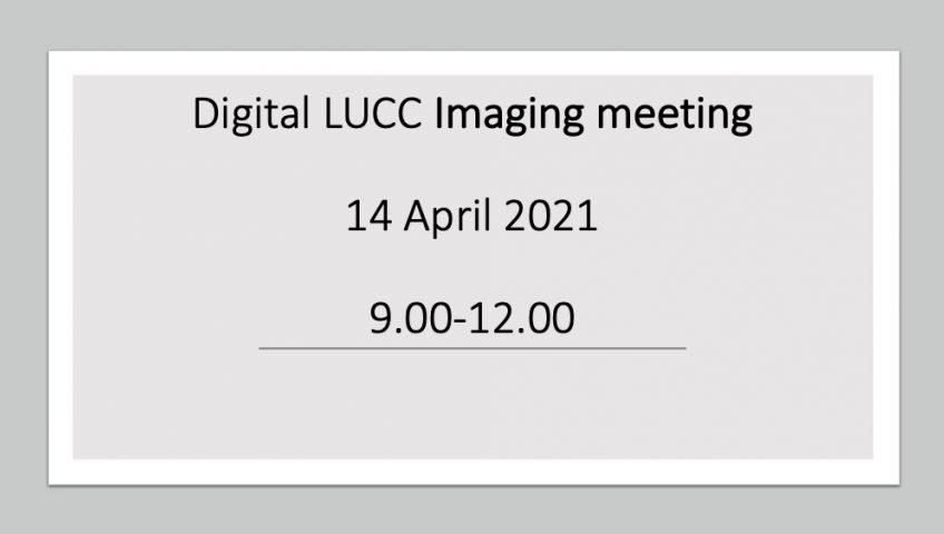 Imaging meeting  - 14 April 2021, between 9.00-12.00 via Zoom