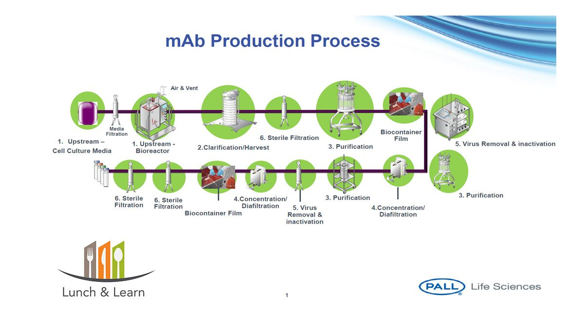 From Lab Scale to Commercial Scale Biopharmaceutical Manufacturing